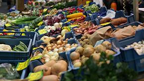 E-Food / Lebensmittel online