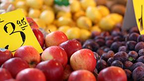 E-Food / Online Lebensmittel